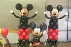 Mickey Party~Amherst Community Hall