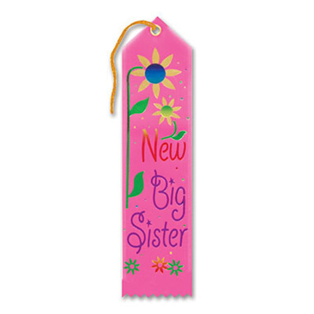 We Like To Party Baby Shower Party Supplies New Big Sister Ribbon