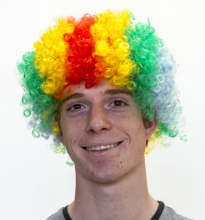 We Like To Party! Clown Wig Multicolour