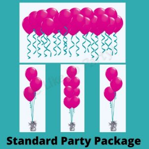 We Like To Party Standard Party Balloon Package