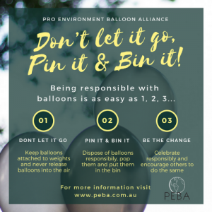 We Like To Party Don't Let It Go Balloon Policy Poster